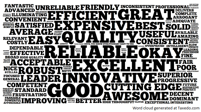 """Word cloud of responses from customer survey using the question, """"What one word best describes this company's products/services?"""